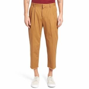 NEW The Rail Pleated Front Cropped Raw Hem Pants